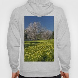 Almond trees and wild flowers (in Portugal) Hoody