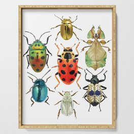 Beetle Compilation Serving Tray