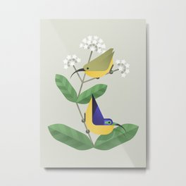 Yellow-bellied Sunbird-asity (cln) Metal Print