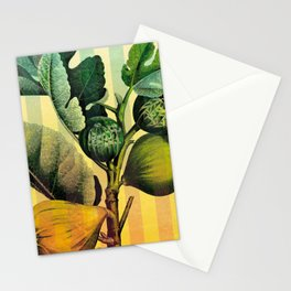 Figs and Stripes Stationery Cards