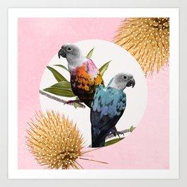 Sun Conure Parrots Art Print