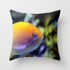 Hey fish!  Throw Pillow