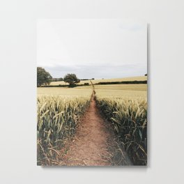 Wheat fields in derbyshire Metal Print