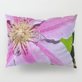 Pink Clematis by Teresa Thompson Pillow Sham