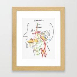Glossopharyngeal Nerve Framed Art Print