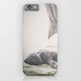 Beautiful gray Scottish Fold cat relaxing on a bed iPhone Case