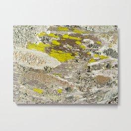 Lichens Over Bark 2 Metal Print