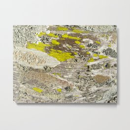 Lichens Over Bark 2 Metal Print