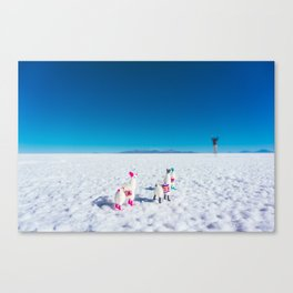Llamas looking into the distance on the Salt Flats, Bolivia Canvas Print