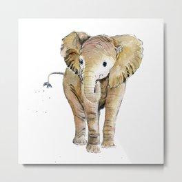 Baby Elephant 4 Metal Print