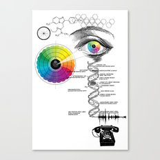seeing, hearing and knowing Canvas Print