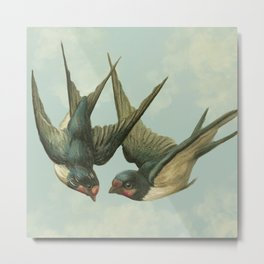 Vintage Swallow Pair Metal Print