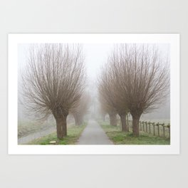 Misty willow lane Art Print