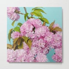 Cherries in Bloom Metal Print