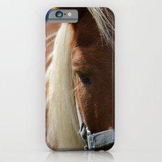 Renaissance Pony - Sorrel Blue iPhone 6s Slim Case