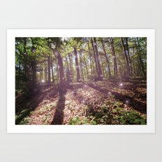 woodland magick Art Print