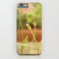 Anarchy in Planter Slim Case iPhone 6s