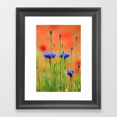 Sapphires and Rubies Framed Art Print