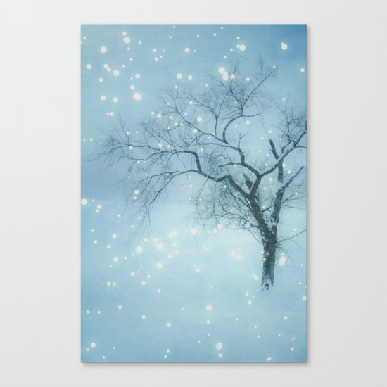Night fall Canvas Print