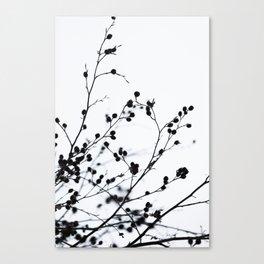 Winter Silhouettes 1 Canvas Print