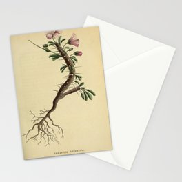 Vintage Print - The Country of Caffraria (South Africa) (1789) - Geranium Spinosum Stationery Cards
