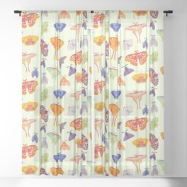 Moth - pastel Sheer Curtain