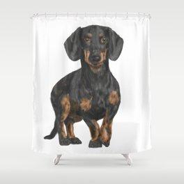 Daschund Shower Curtain