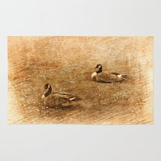 vintage style photography, two ducks on the park grass. Rug