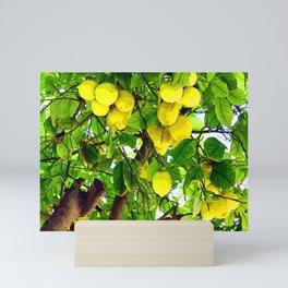 If life gives you lemons... Mini Art Print