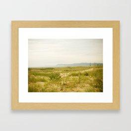 Peterson Beach Dune Grass Framed Art Print
