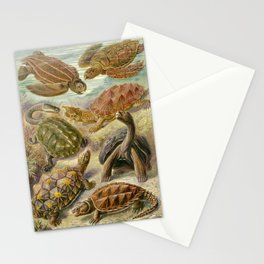 Ernst Haeckel Chelonia 1904 Stationery Cards