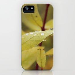 Drop 2 iPhone Case