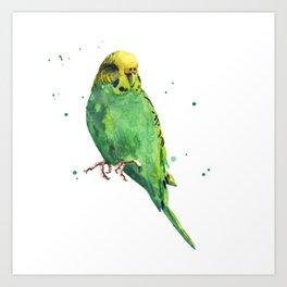 Chartreuse Charmer Art Print
