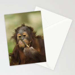 Funny Orangutan Baby Girl Stationery Cards