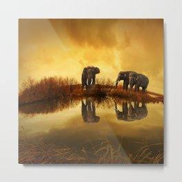 Elephant 3 Metal Print