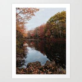 Maine Art Print