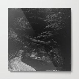 Quiet Cove at Donaldson Run Metal Print