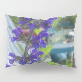 Salvia Pillow Sham