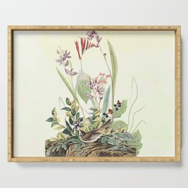 Adventures with Audubon Serving Tray