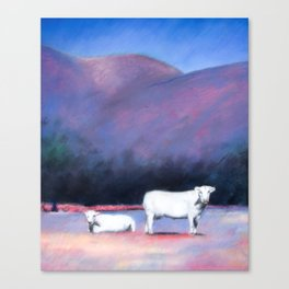 Arizona Cows Canvas Print