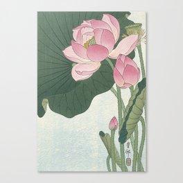 Flowering lotus flowers, Ohara Koson Canvas Print