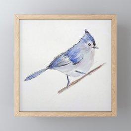 Blue Bird Framed Mini Art Print