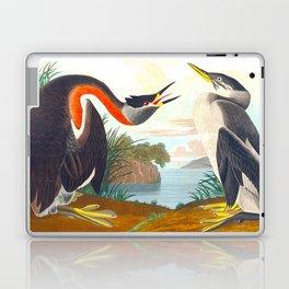 Red-necked Grebe Laptop & iPad Skin