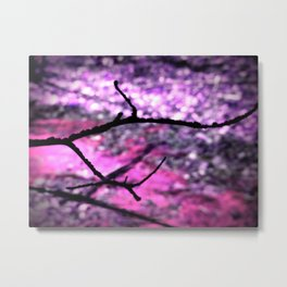 Pink Lavender Nature Abstract Metal Print