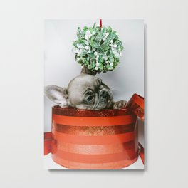 Christmas Pup in a Present with Mistletoe (Color) Metal Print