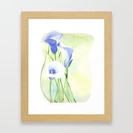 Calla Lilies Framed Art Print