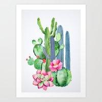 Cactus 10a Art Print