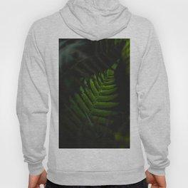 Secret Fern Leaf Shrouded in Darkness Hoody