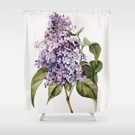 Lilac Branch Shower Curtain