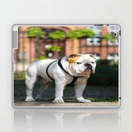 No Entry - Bulldog #decor #homedecor Laptop & iPad Skin